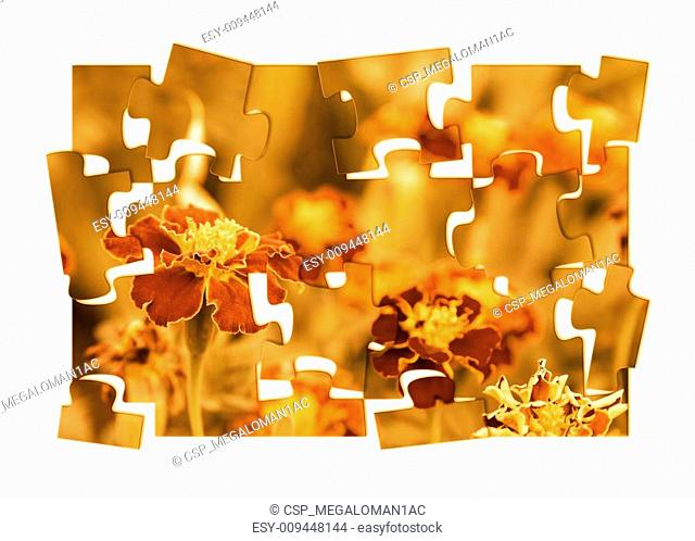 Graphic art with tagetes flowers theme