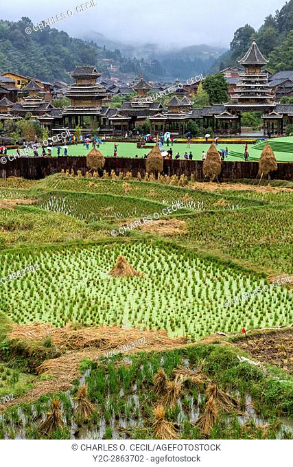 Zhaoxing, Guizhou, China, a Dong Minority Village. Rice Paddies in Foreground, Entrance to Village in Background