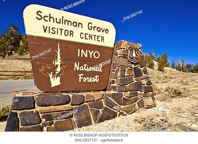 Sign at the Schulman Grove, Ancient Bristlecone Pine Forest, Inyo National Forest, White Mountains, California USA