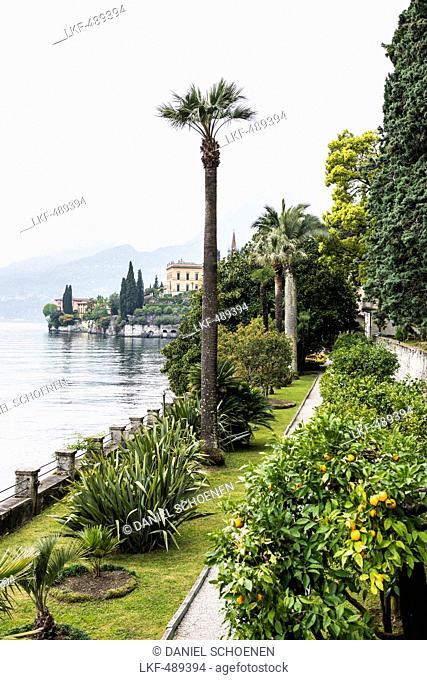 Gardens of Villa Monastero, Varenna, Lake Como, Lago di Como, Province of Lecco, Lombardy, Italy