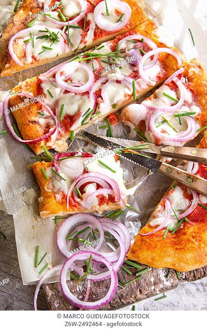 Freshly baked pizza with red onion and mozzarella