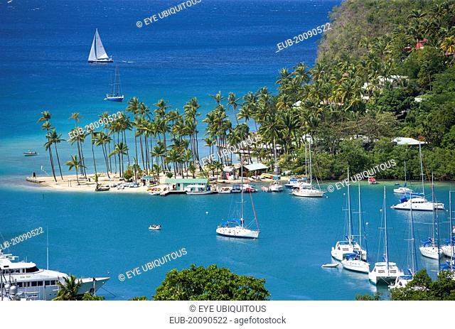 Marigot Bay The harbour with yachts at anchor and a yacht sailing out at sea beyond the small coconut palm tree lined beach of the Marigot Beach Club sitting at...