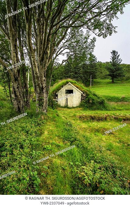 Turf-roofed small farm house, South Coast, Iceland