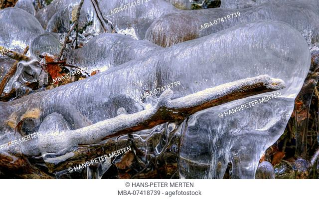 Ice formation on a small forest stream, Wenichbach in the Tabener jungle, Taben-Rodt, Saar Valley, Rhineland-Palatinate, Germany
