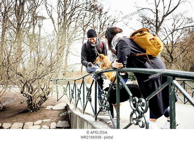 Couple with dogs standing on bridge at park