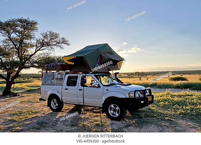 Kgalagadi Transfrontier Park, Mabuasehube Section, Kalahari, South Africa, Botswana, Africa - Kgalagadi Transfrontier Park, South Africa, Botswana, 20/02/2014